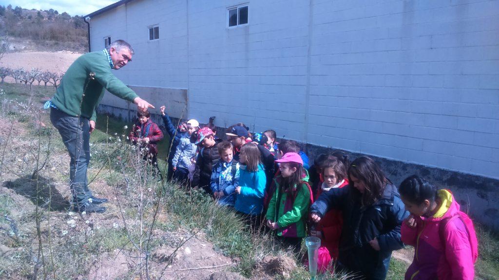 Visitas Escolares al Valle